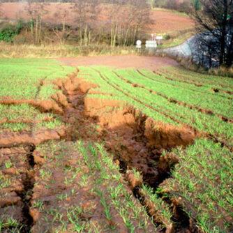 Політика ЄС з підтримки якості ґрунтів