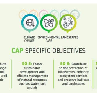 Сільськогосподарські практики, які можуть застосовуватися як еко-схеми