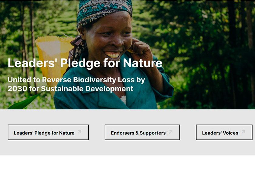 75 країн заявили про готовність працювати над відновленням біорізноманіття