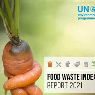 Нове дослідження ЮНЕП про харчові відходи: справжні масштаби досі були недооцінені