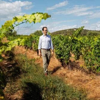 Регенеративне сільське господарство: як окупаються старі способи землеробства в Іспанії