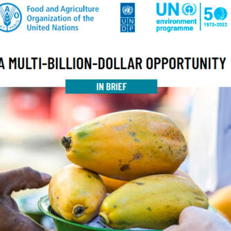 ООН наполягає на необхідності переформатувати глобальну систему підтримки сільського господарства для переходу на більш стійкі харчові системи
